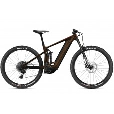 GHOST E-Bike E-Riot Trail CF Advanced B625 - Chocolate / Brown